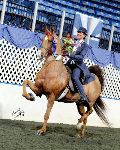 Faye Wuesthofen taking her victory pass aboard CH-EQ Kiss Of The Zodiac after winning the USEF Medal Finals and Equitation Triple Crown in 2009.