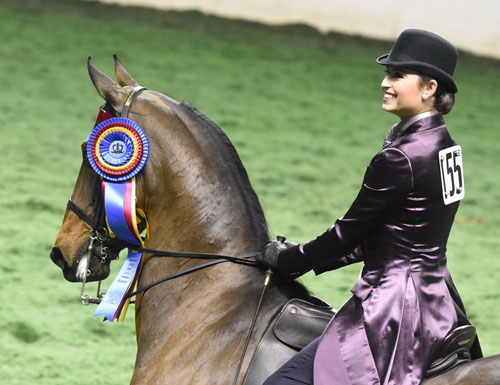 Juliette Dell rode CH Reedann's Rare Mystery to take the tricolor in the Adult Country Pleasure Championship. Photo by Avis.