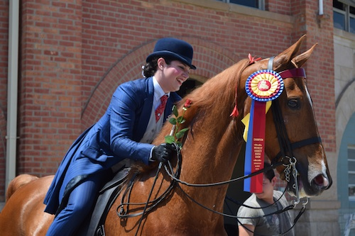 Lauren Arquilla and College Man took the tricolor in the Pleasure Equitation 14 17 Championship.