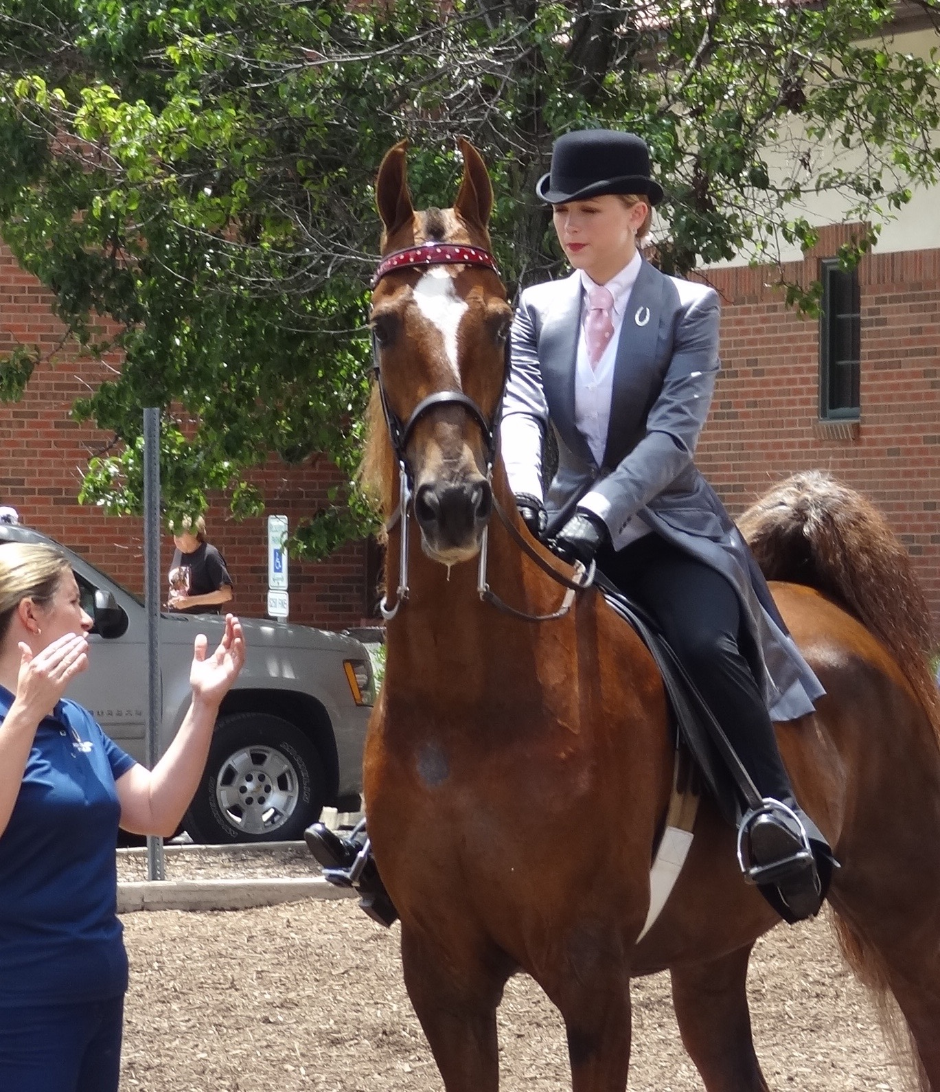 McGee Bosworth and CH Lets Talk were the Amateur Three Gaited Park Champions and Grand Champions.