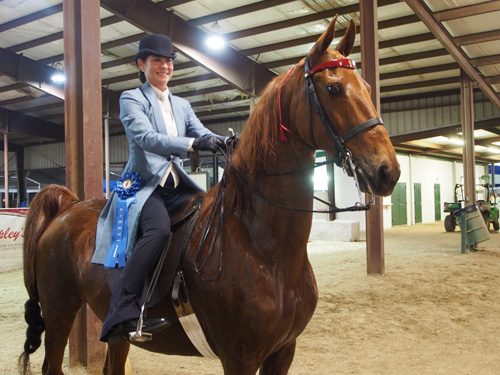 Elly Berman rode CH Tuffy's Miss Alison to the Adult Three-Gaited Show Pleasure 39 & Over blue.