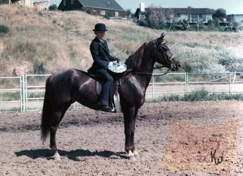 Elisabeth on her first horse, a Morgan named Waer's Miss Marcy.