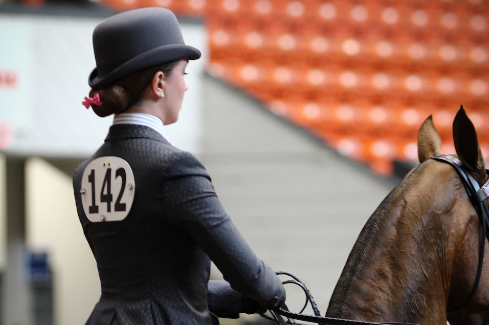 The rider's body type and riding style are two of the most important considerations when selecting an equitation horse. Photo by Dallys Malenfant.