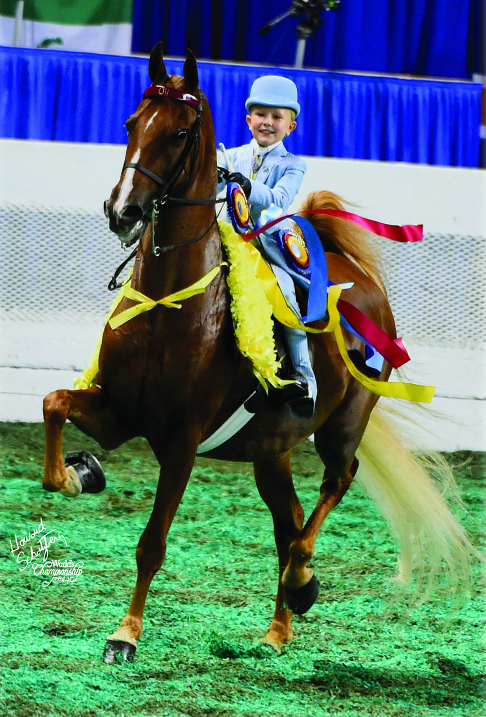 At the World's Championships in 2014, Molly Crim found herself in need of a walk and trot mount, so Reese and Erin Richey offered their daughter Reagan's horse, Miraculous Odds.