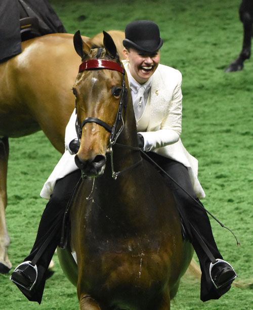 Amanda Murchison was thrilled with her wins with Spread The Word in the Adult Three-Gaited Show Pleasure division. Photo by Avis.