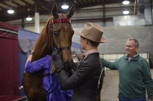 Amy Stinnett hugged Agent Cool Blue after he and her son Clayton completed a wild workout to win the Junior Exhibitor Five-Gaited Show Pleasure Championship.
