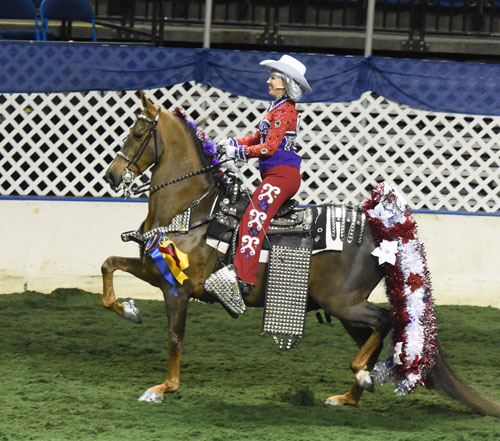 Marty McFly and Toni Utoft won the Parade Horse Championship for the third consecutive year. Photo by Avis.