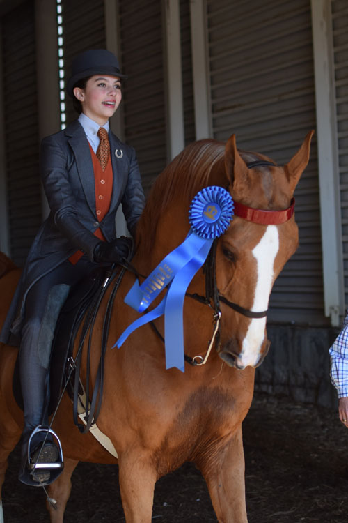 Thea Merlo rode CH High Point's Grandee to the Junior Exhibitor Country Pleasure 13 Under blue under the Northern Tradition banner.