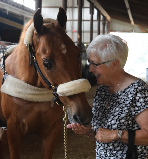Vickie Byrd shares a mint with Amateur Masters Five Gaited Champion Iconium.