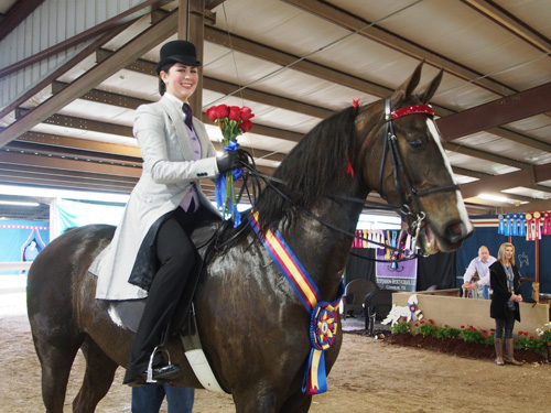 Kara Hachigian and Party Nut took the Five-Gaited Show Pleasure Championship.