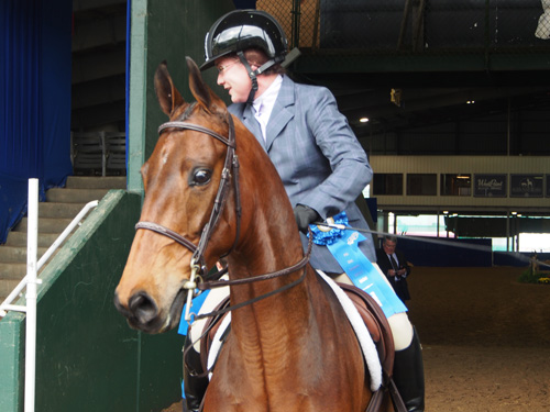 VHF Rhythm's Licorice Maker and Rebecca Stewart won the Hunter Country Pleasure class.