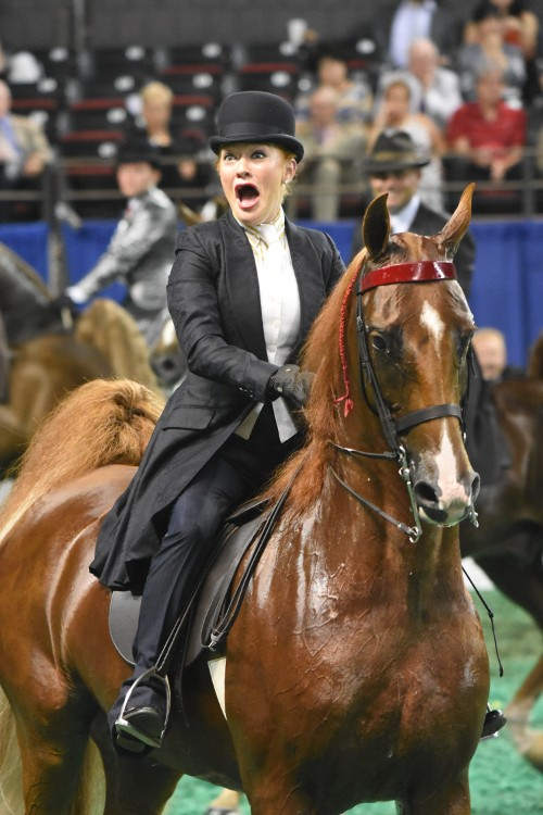 Ali was shocked when she and Memories Of Cabo were called as the Amateur Five-Gaited Championship winners.