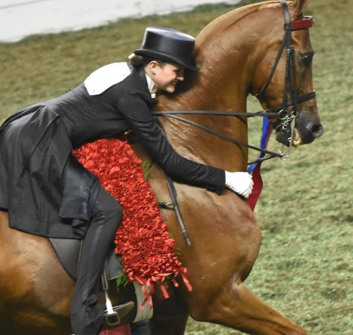 Senior Equitation Worlds Champion of Champions Aleia Brown hugs Madeiras Fame