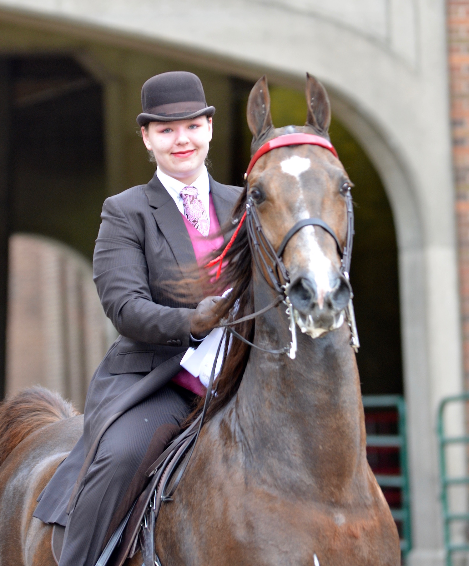 Happy show horses should look bright and interested in their surroundings,