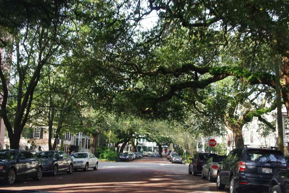 There was lots of downtime to explore the beautiful town of Savannah.