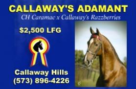 Callaway Hills Stable