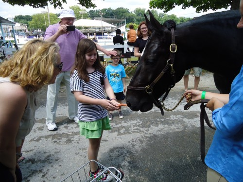 Saddlebred Midnight Eclipse meeting and greeting fair-goers at Devon in 2012. Photo by Allie Layos.