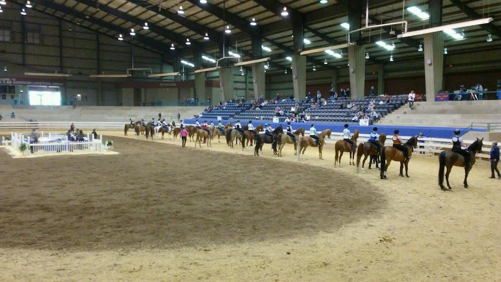 The success of large academy classes is often thanks to great horses and great trainers and instructors.