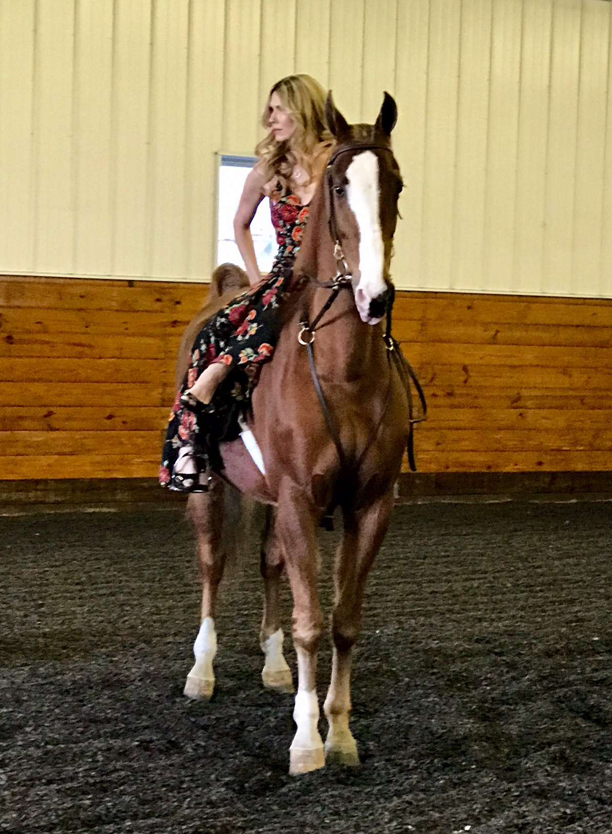 He was a great sport when they asked me to pose sidesaddle in an evening gown.