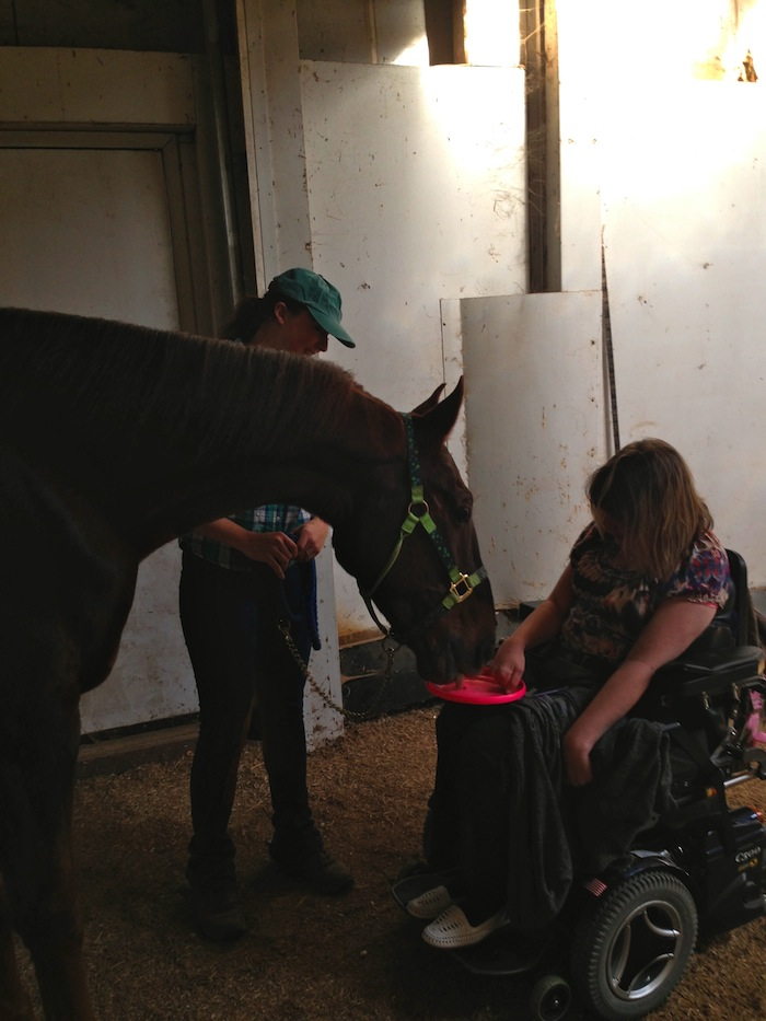 I was a little worried about how Slider would react to Brittany's wheelchair, but he was a perfect gentleman.